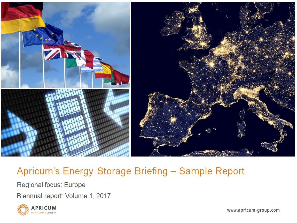 Apricum's Energy Storage Sample Report