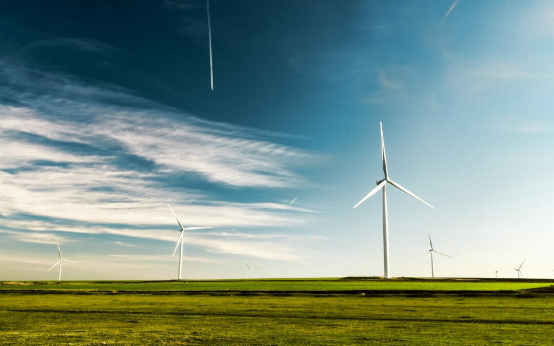 Fit for 55: Renewable energy opportunities abound in Central and Southeastern Europe